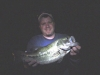 Surface Night Bass
