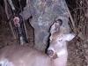 kyle 1st deer 09