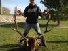 Patrick's Elk