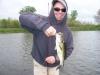Casey's Bass